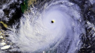 Typhoon: the morning after